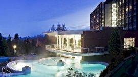- Nagykanizsai wellness hotel