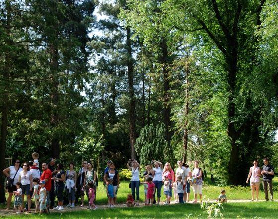 Kámoni Arborétum, Szombathely